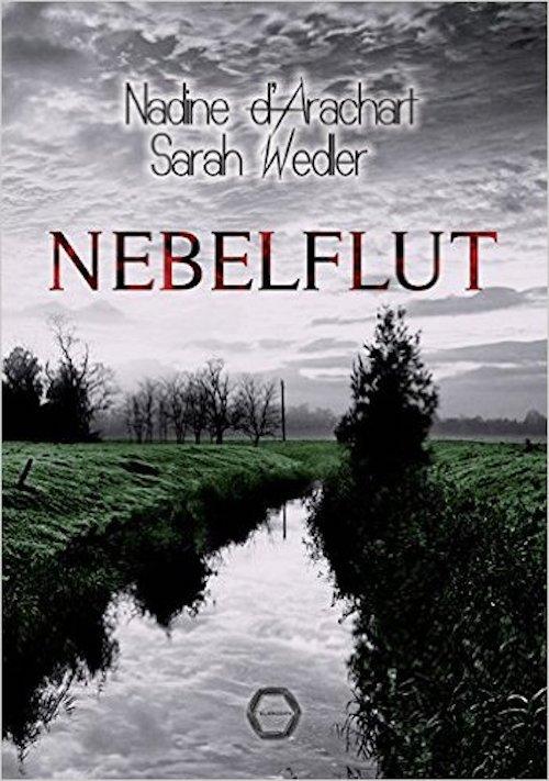 Rezension Nebelflut von Nadine d'Arachart und Sarah Wedler | Thriller | Irland | Entführung | Dublin | Krimi | Tintenmeer