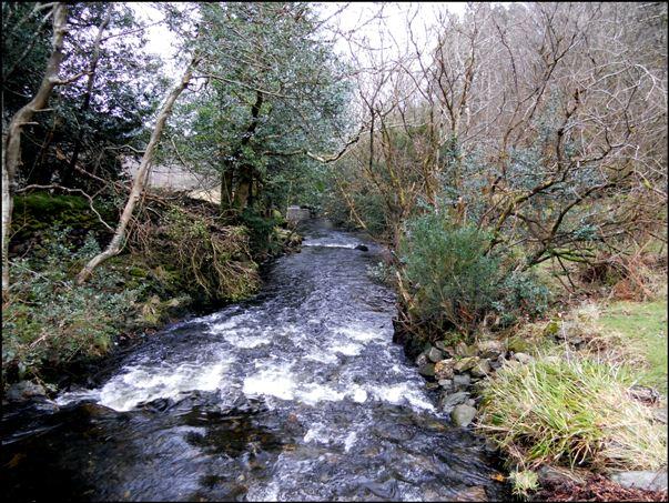 River Camac Irland