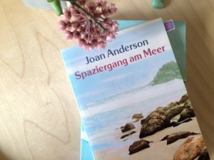 Anderson Spaziergang am Meer