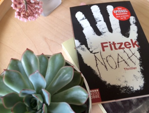Rezension Noah von Sebastian Fitzek | Thriller | Überbevölkerung | Wissenschaftsthriller | Frank Schätzing | Marc Elsberg | Tintenmeer