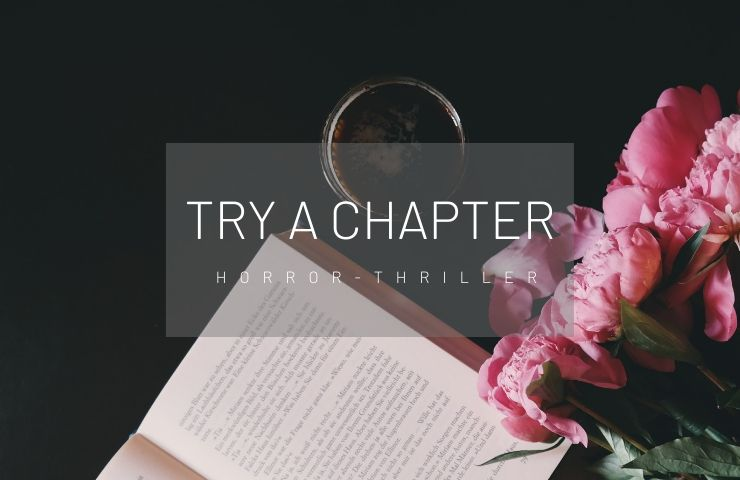 Artikelbild Try a Chapter Horror Thriller